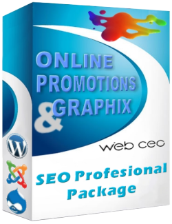 SEO Profesional Package